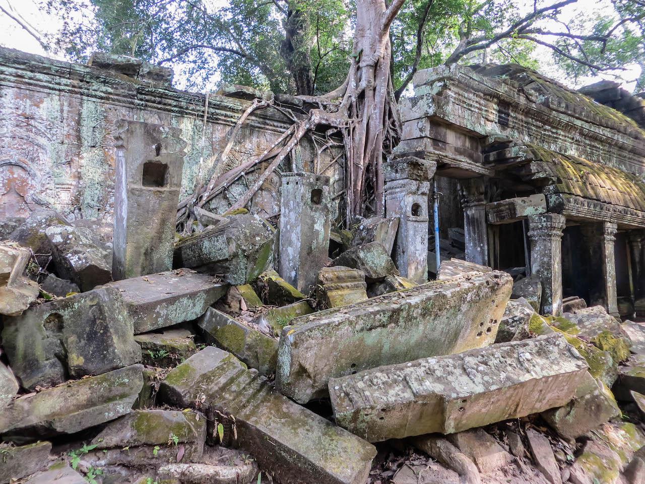 Der Tempel Ta Prohm.