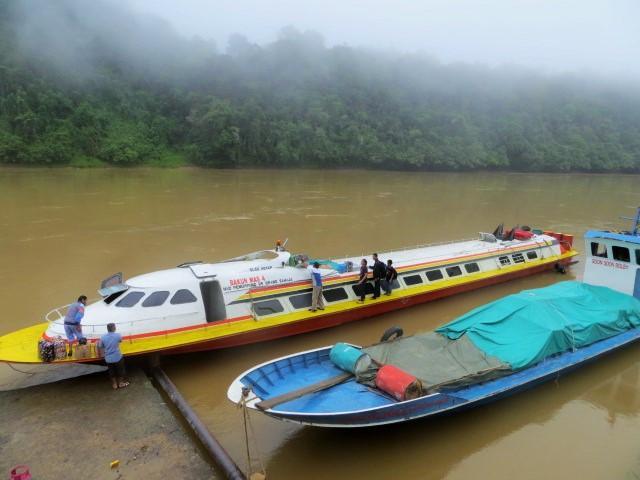 Durch den Dschungel Borneos