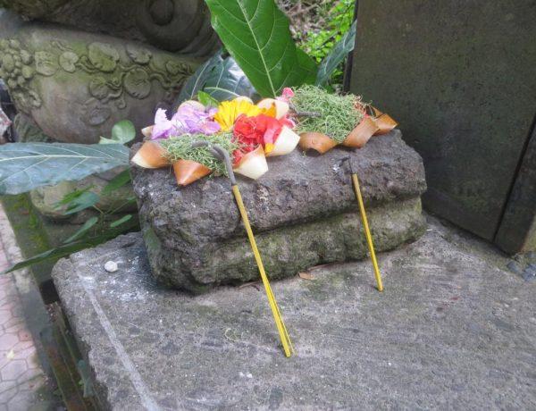 Ubud: Wie spirituell ist das Herz von Bali tatsächlich noch?