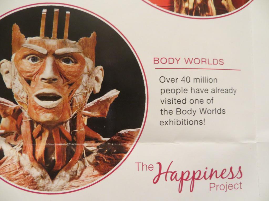 Permanente Ausstellung von Bodyworlds in Amsterdam.