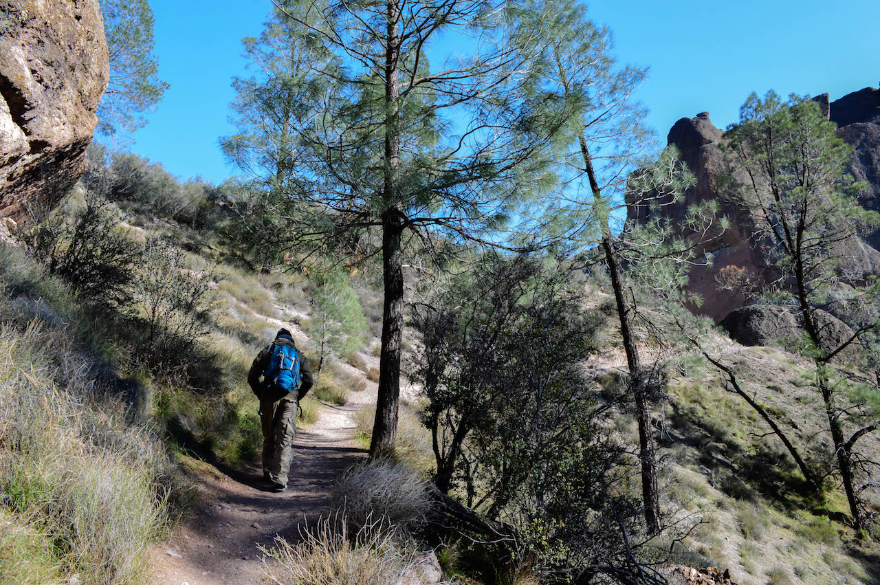 Unterwegs im Pinnacles Nationalpark.
