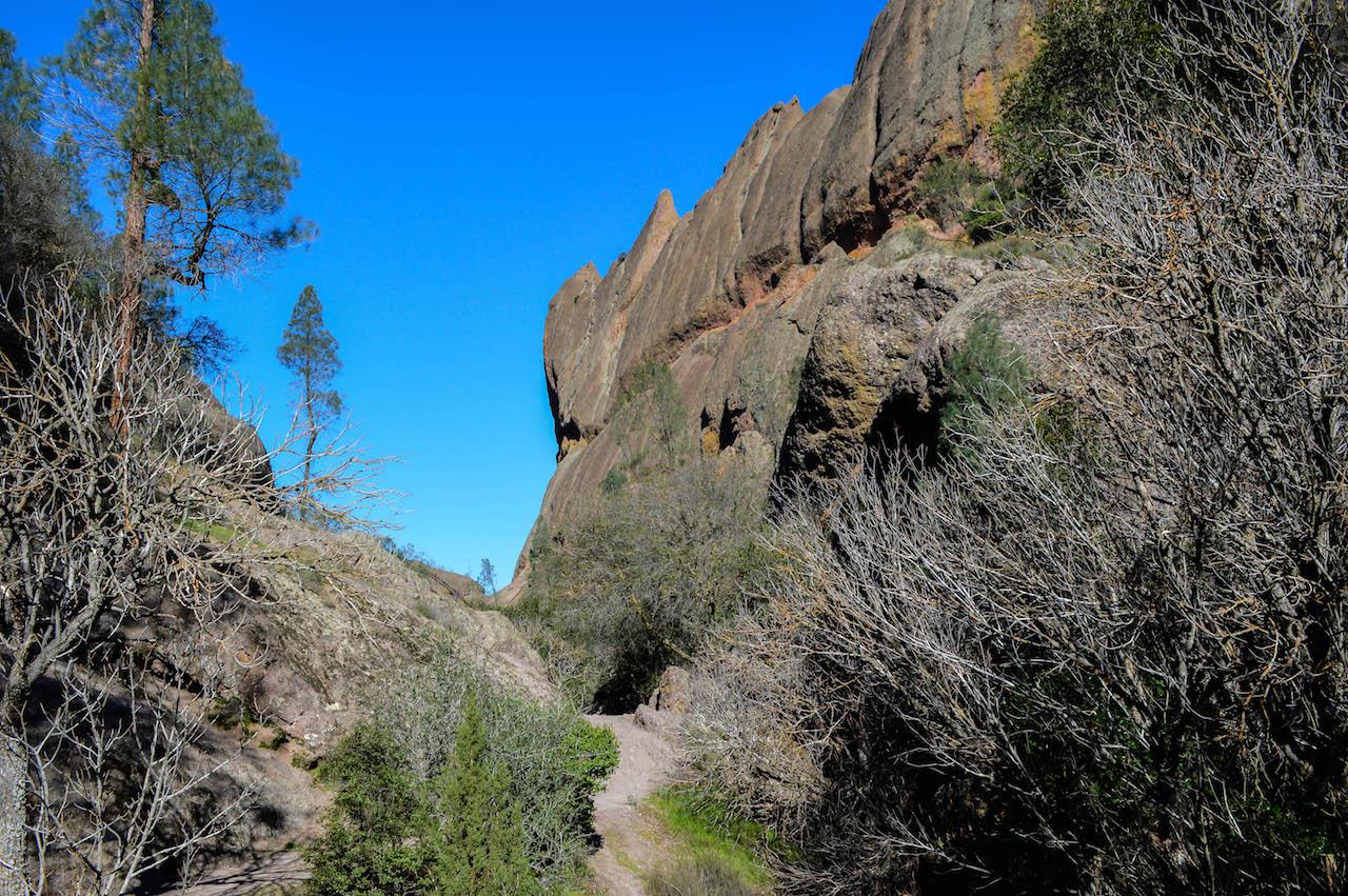 Der Pinnacles Nationalpark: Klein, aber fein.