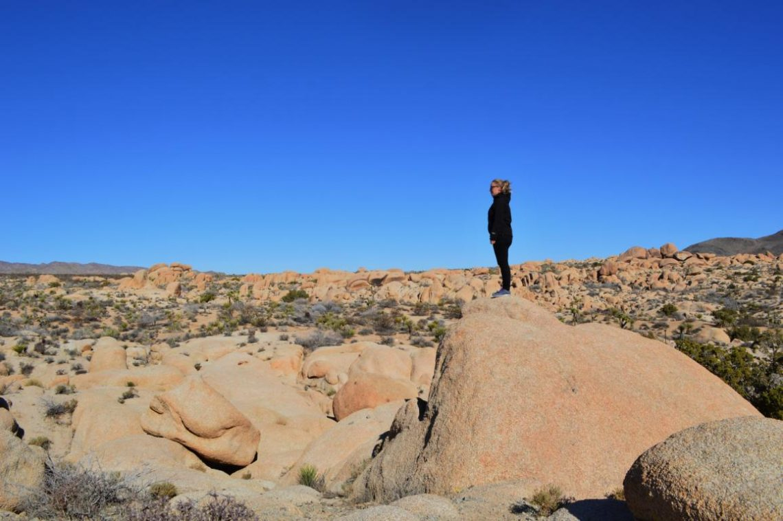 Ein- und Aussichten im Joshua Tree Nationalpark