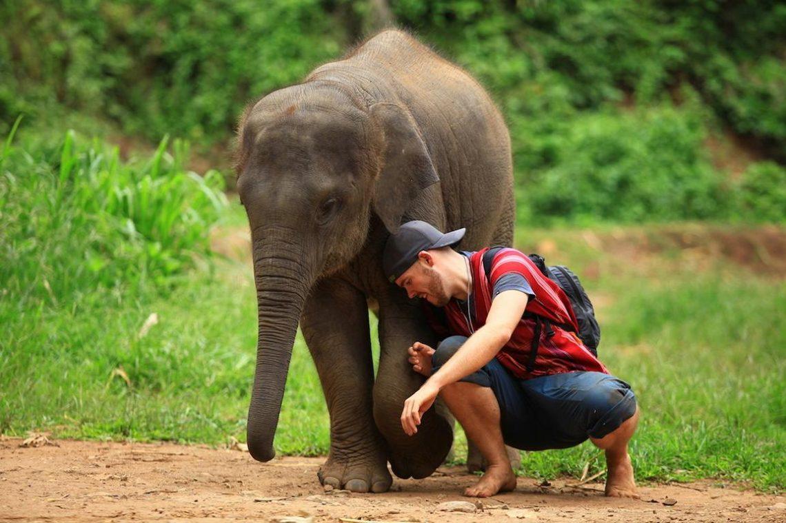 Reiseblogger erzählen: Tierische Geschichten