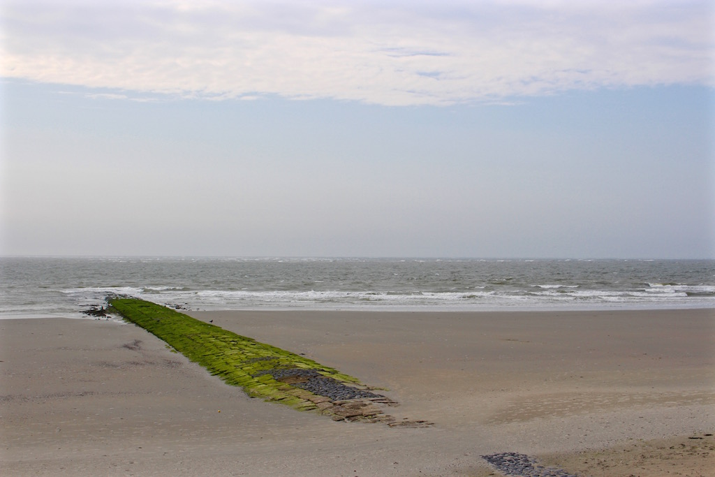 Die wilde Nordsee...