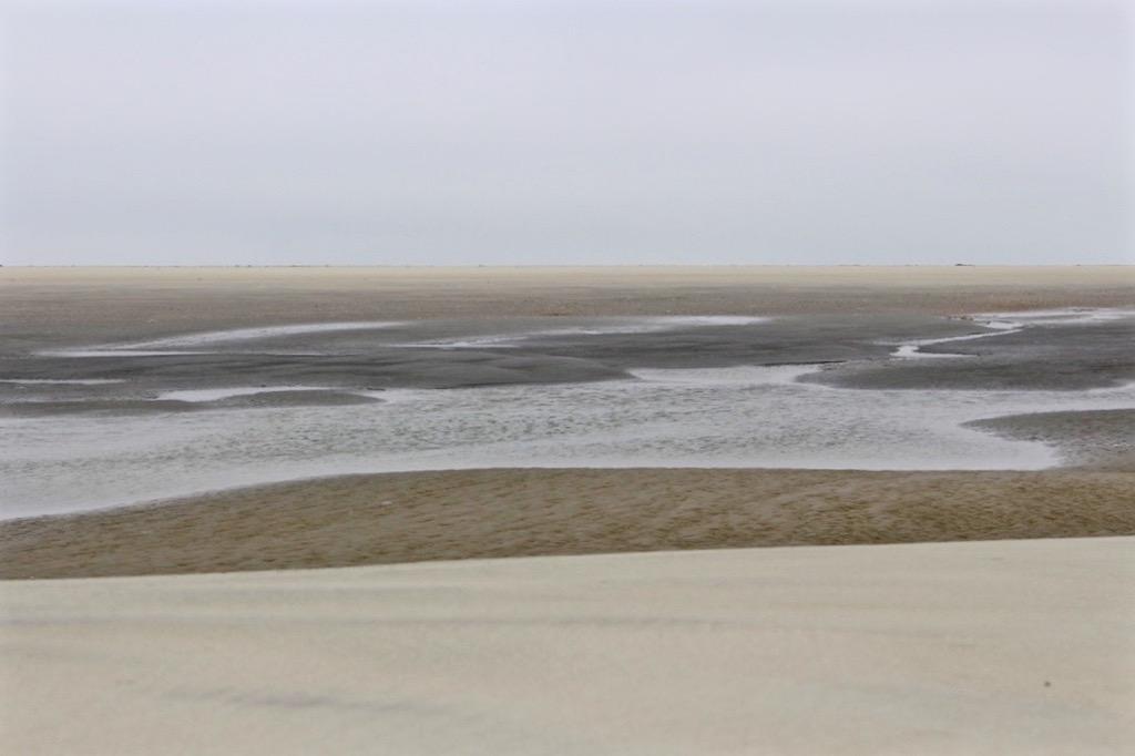 Braun in Grau in Blau an der Nordsee.