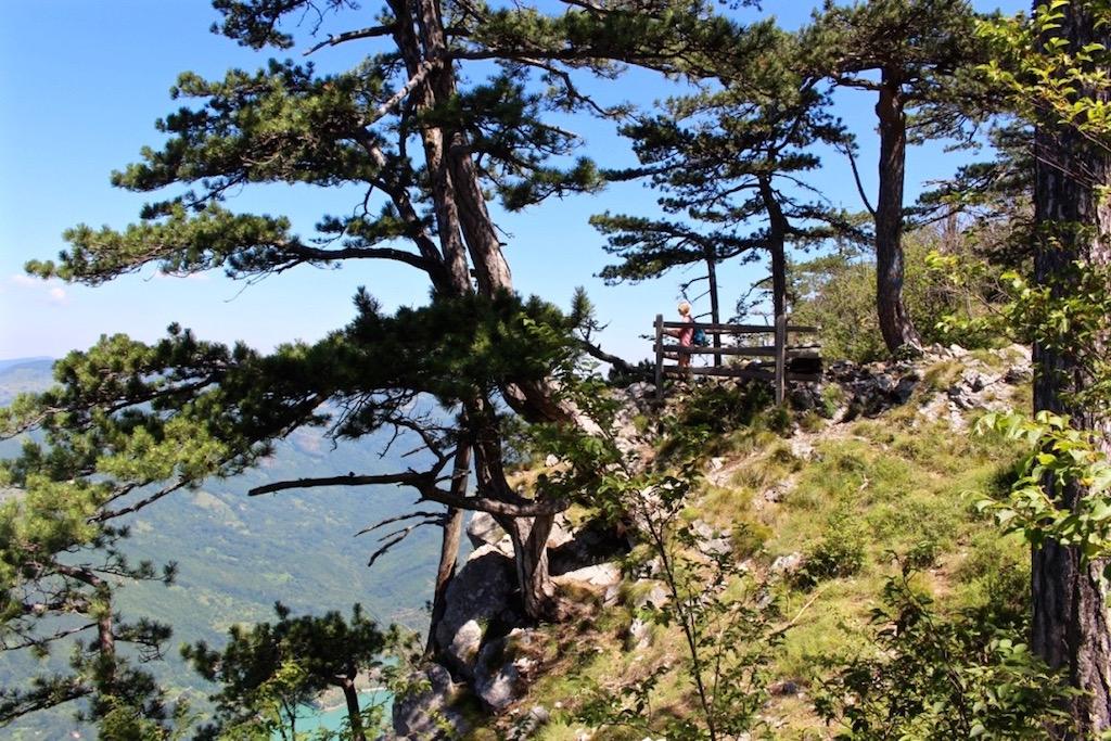 Wandern im Tara Nationalpark in Serbien.
