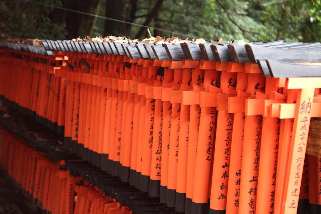 Tore des Tore des Fushimi Inari-Taisha Schreins.