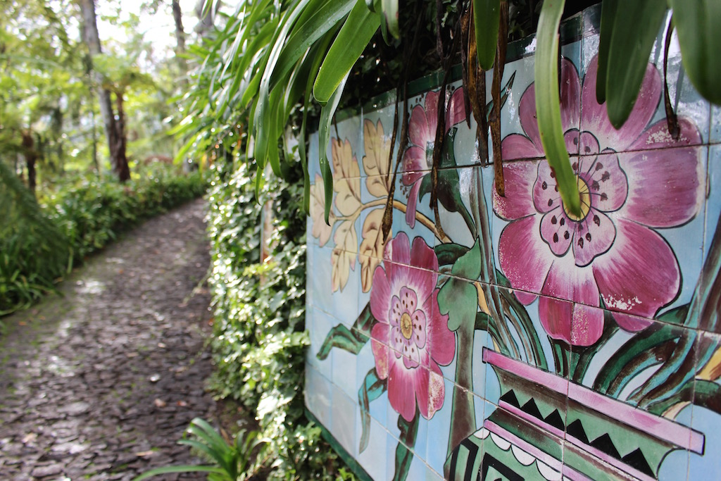 Im botanischen Garten Funchals...