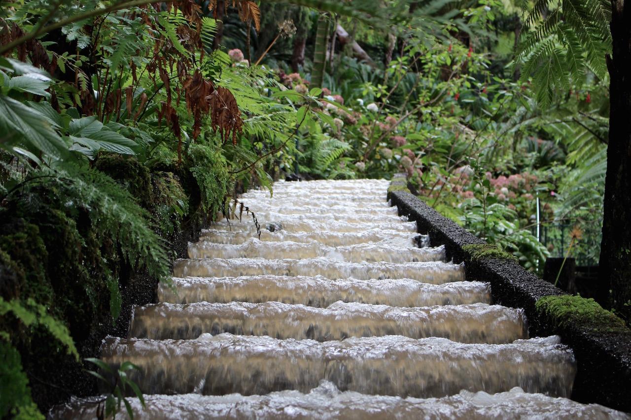 Levadas im botanischen Garten in Funchal.