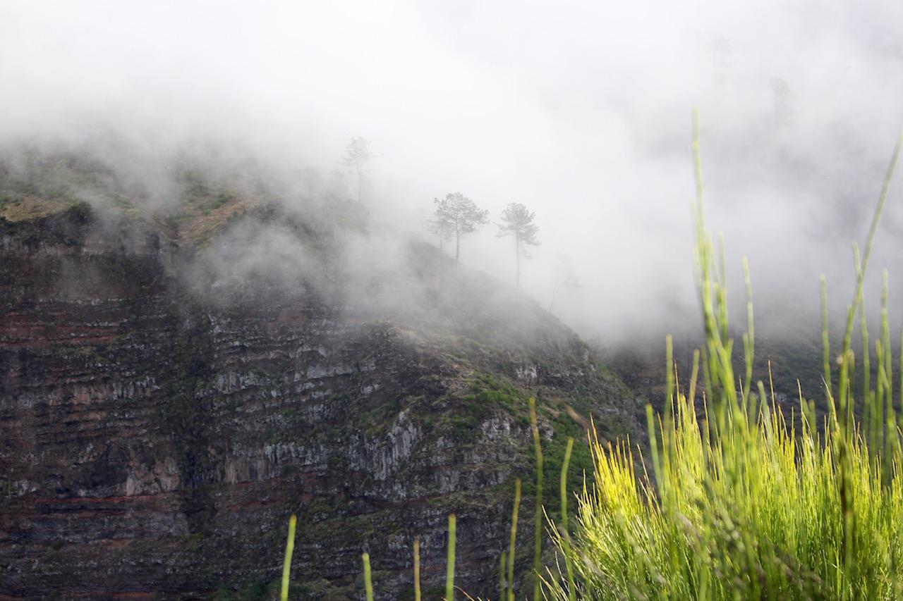 Auf dem Eira do Serrado taucht schnell Nebel auf und verspricht so ein mystische Stimmung.