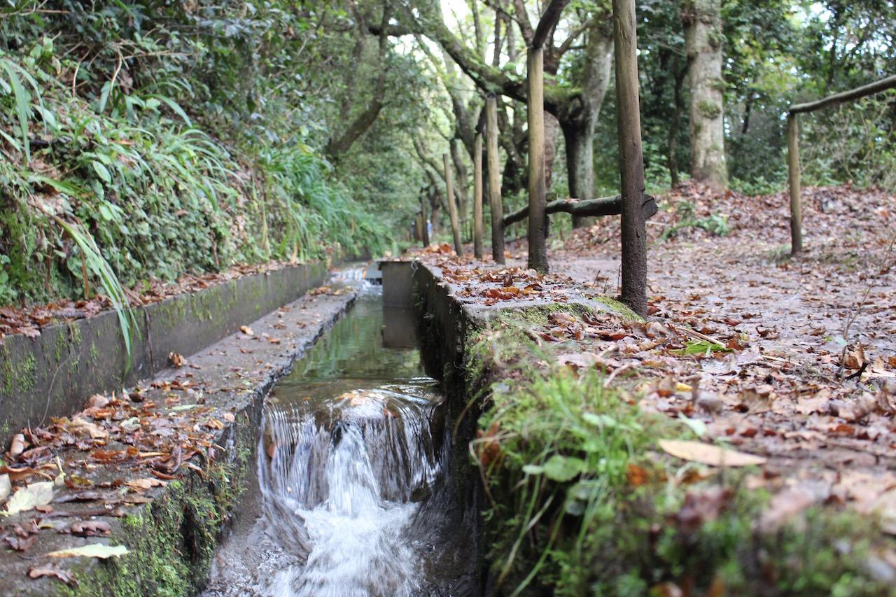 Entlang der Wasserläufe lässt es sich wunderbar Wandern.
