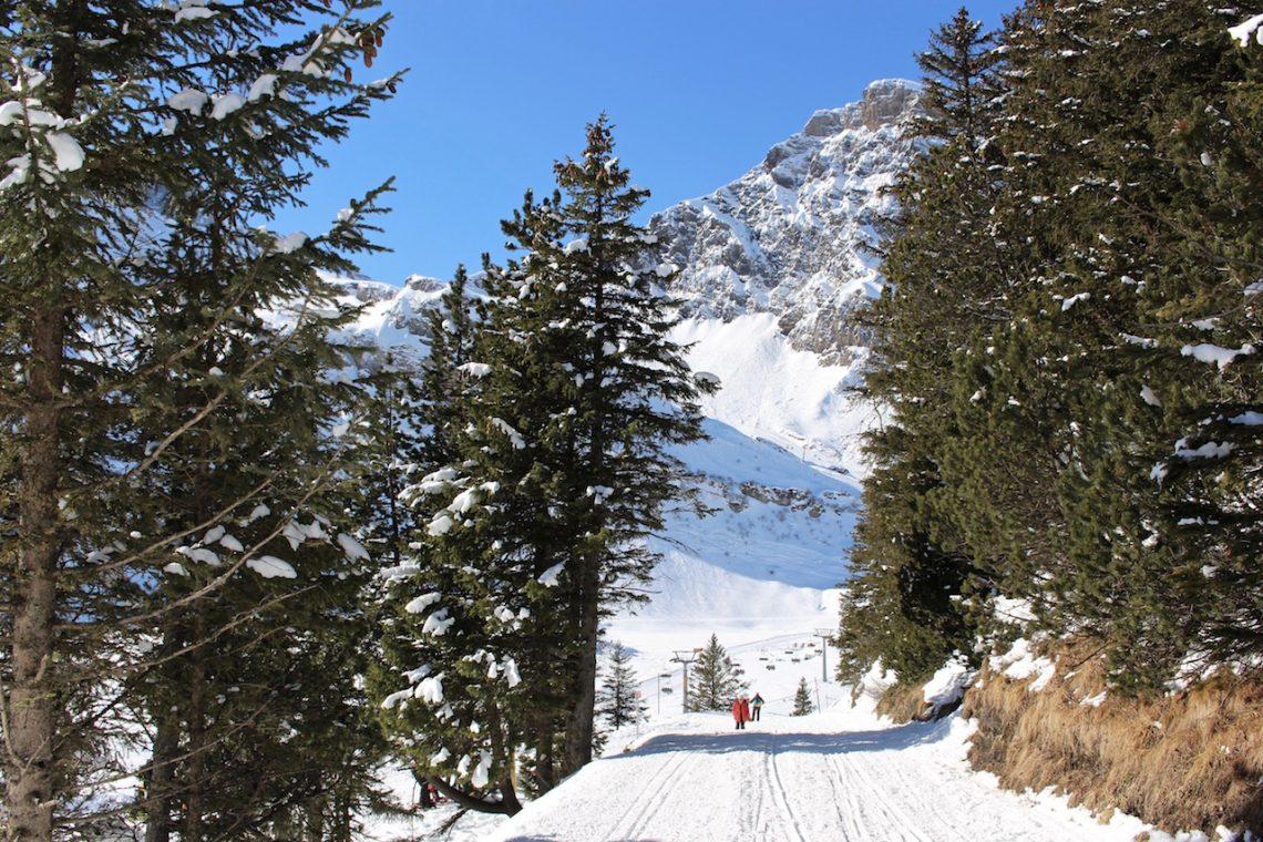 Winterwandern in Engelberg.