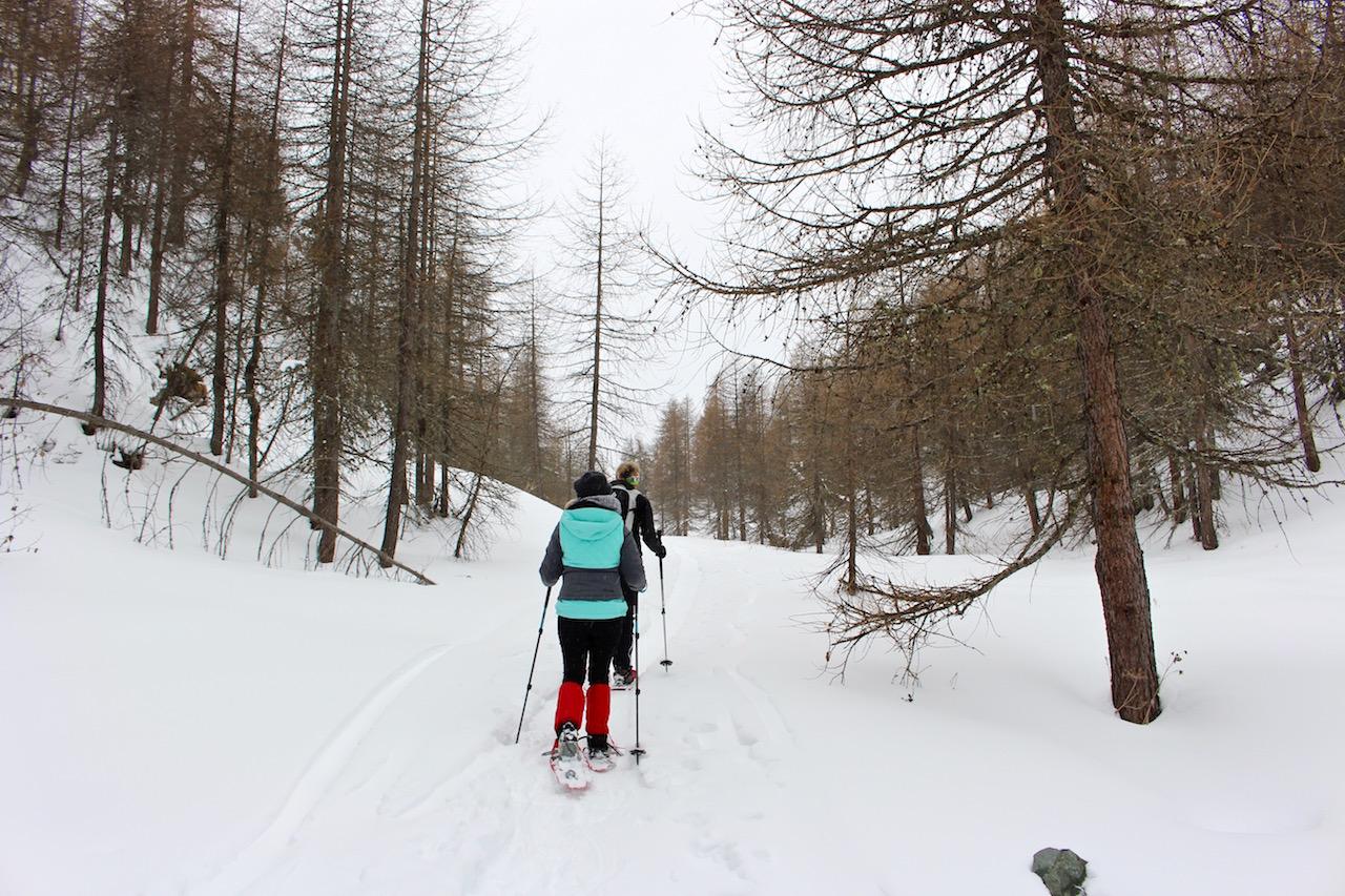 Auf dem Weg zur Alp Grivasalvas.