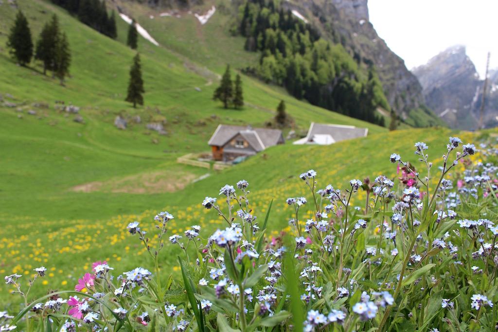 Idyllische Landschaft im Appenzellerland.