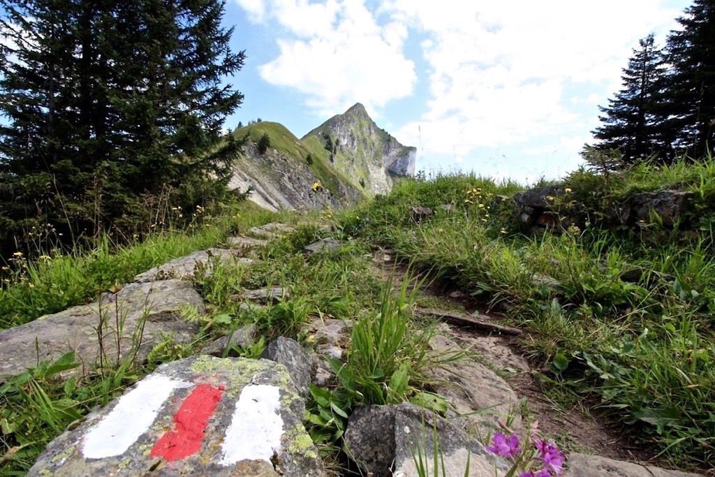 Bergwanderweg zum Augstmatthorn.