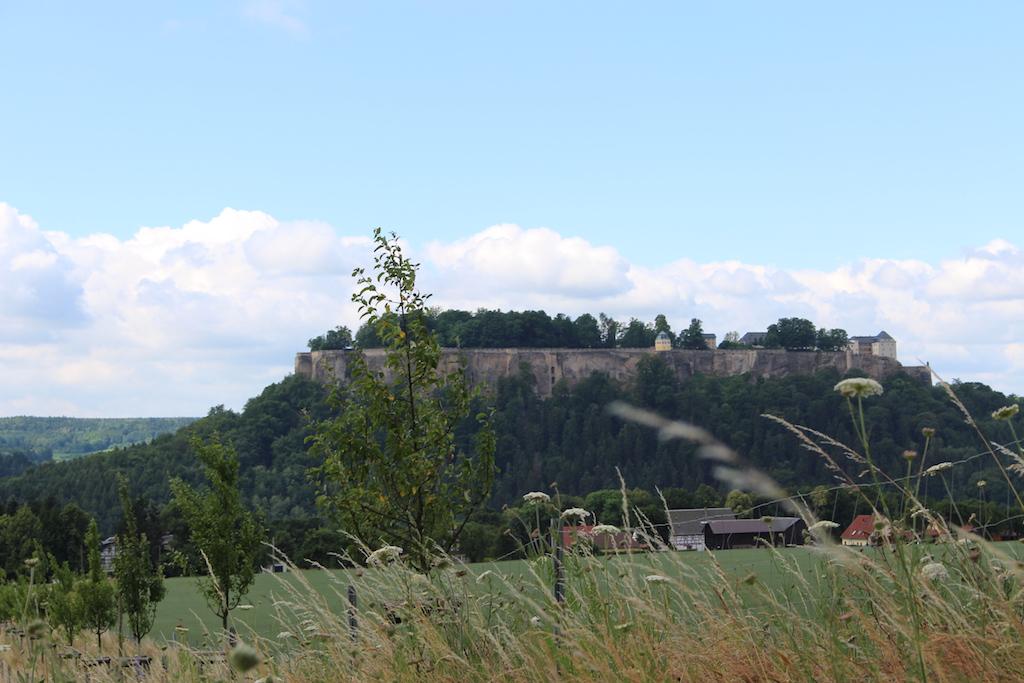 Blick zur Burg Königstein.