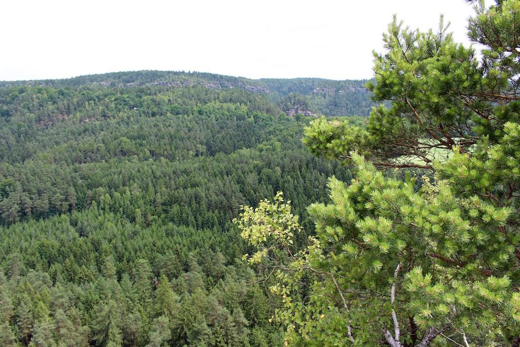 Pause auf dem Gamrig mit Blick auf die Wälder der Sächsischen Schweiz.