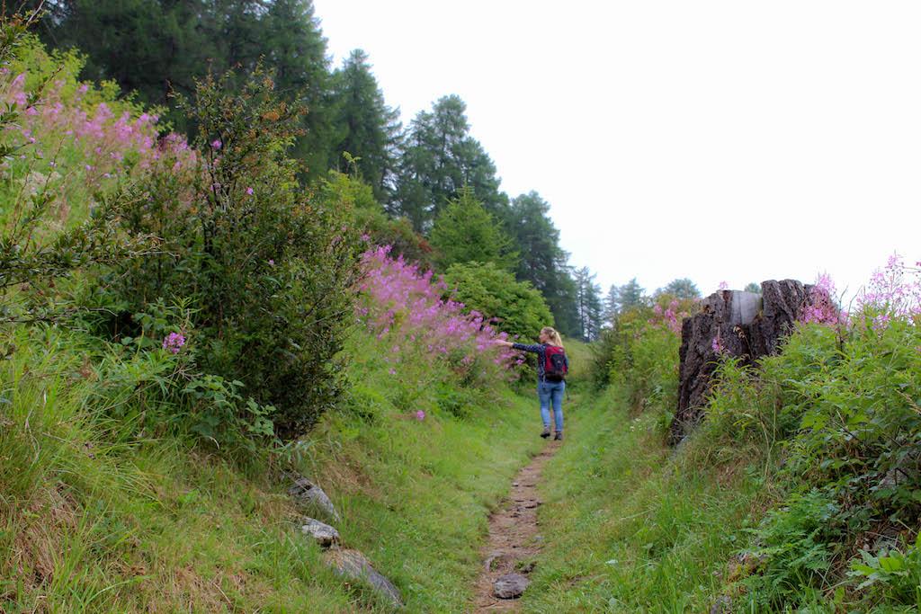 Unterwegs auf dem Schellen-Ursli Weg in Graubünden.