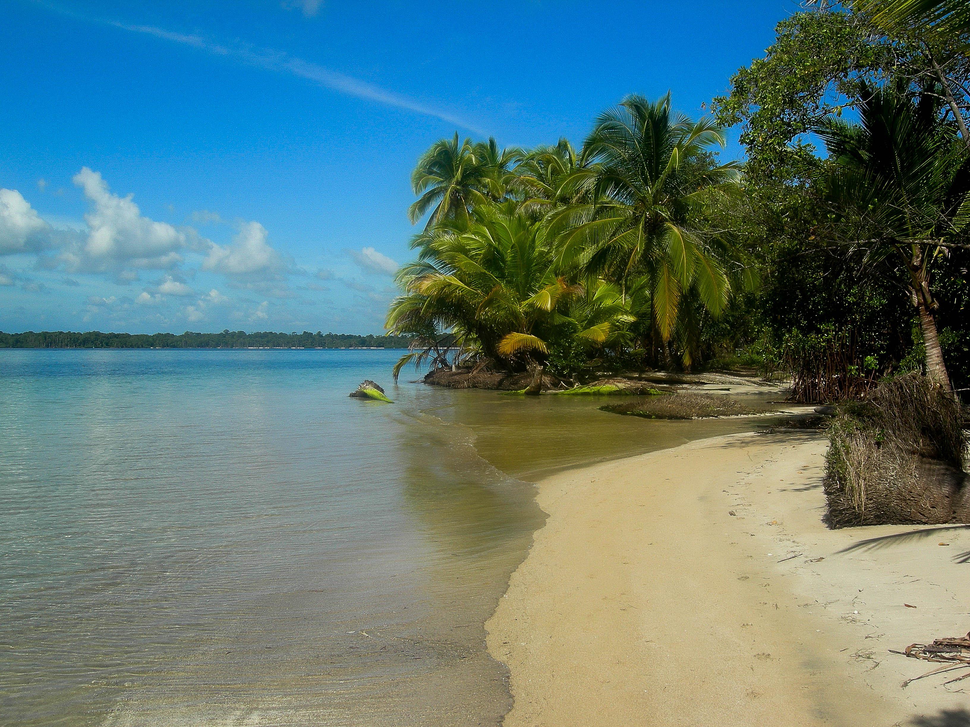 Wunderschönes Bocas del Toro.