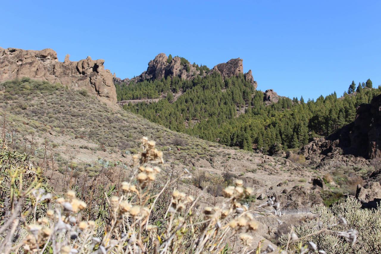 Überraschende Aussichten auf Gran Canaria.