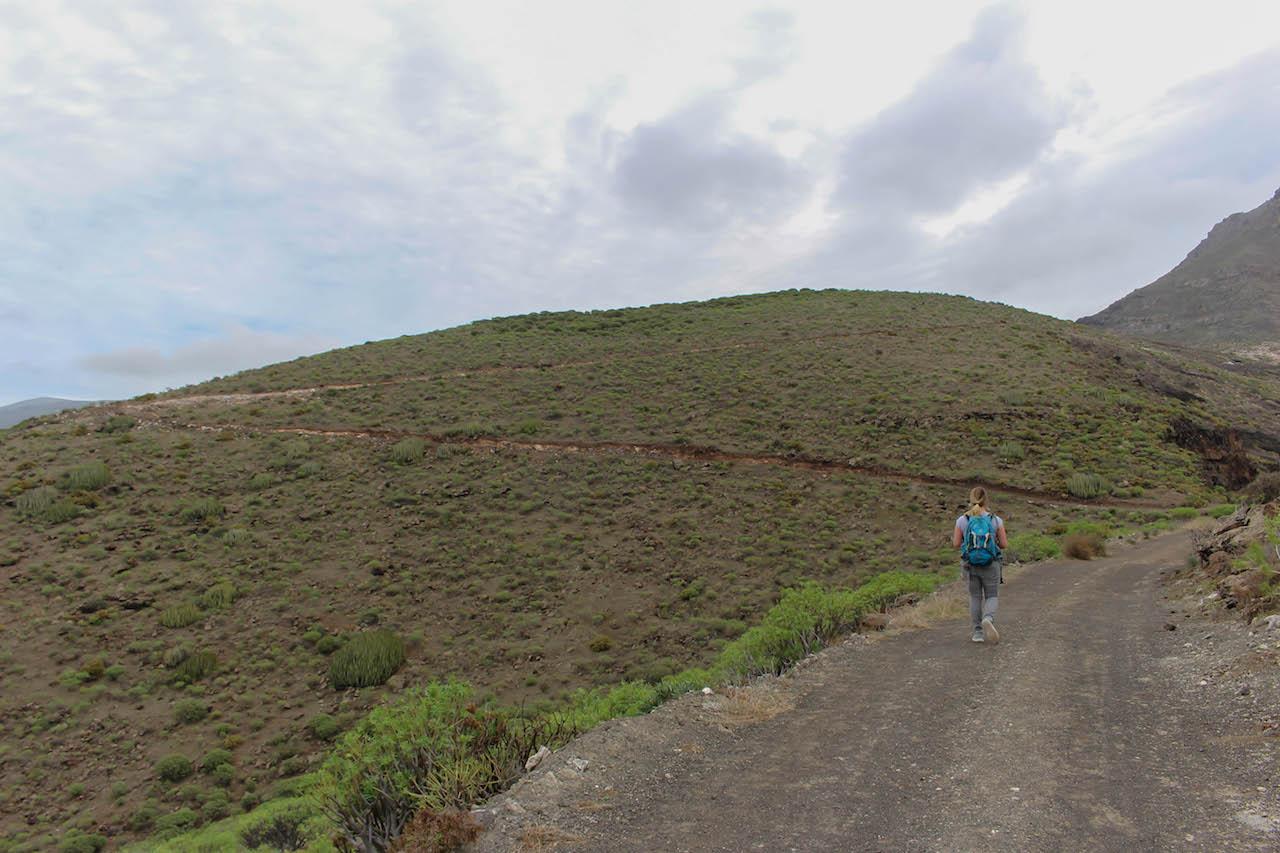 Wandern in der Umgebung von Agaete.