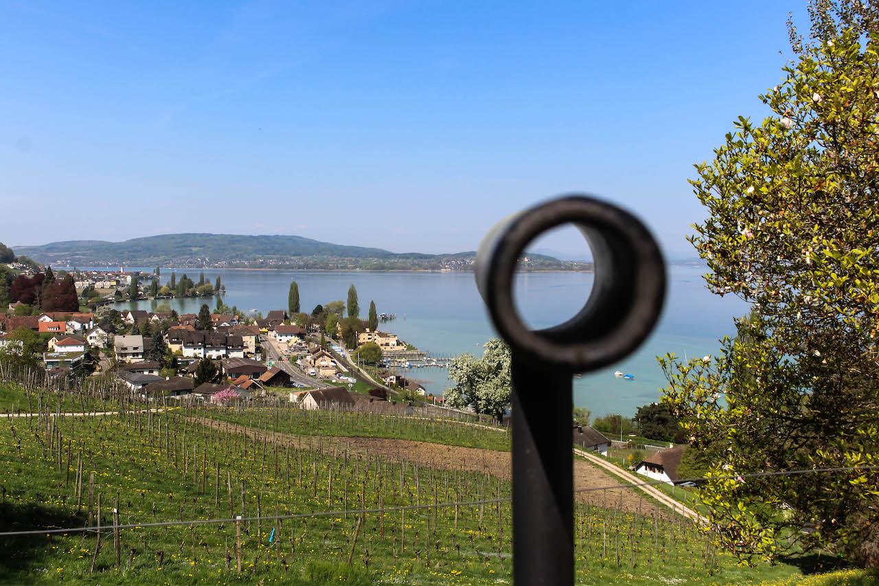Aussicht vom Schloss Arenenberg.