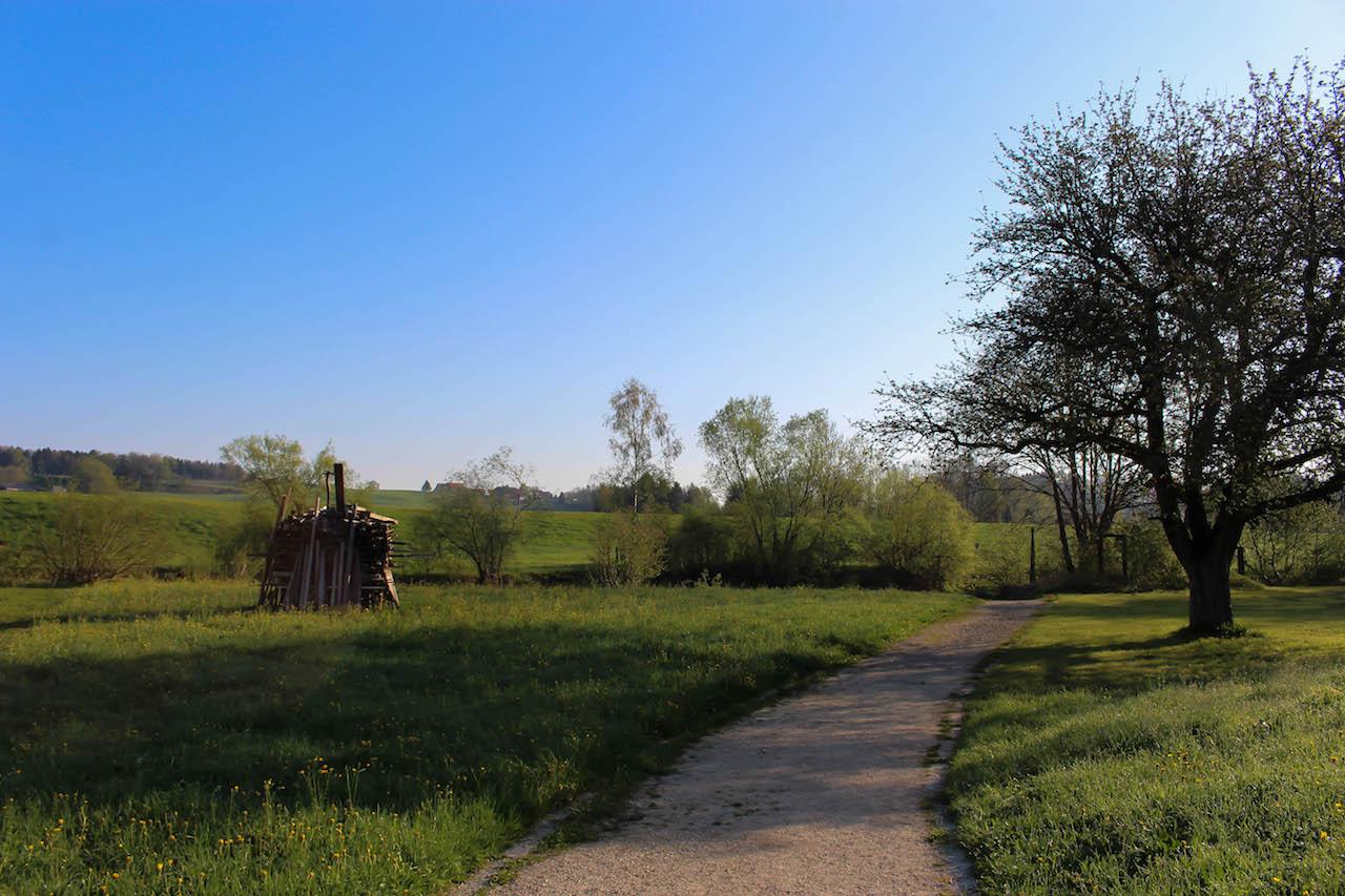 Umgebung des Hofes Gertau im Thurgau.