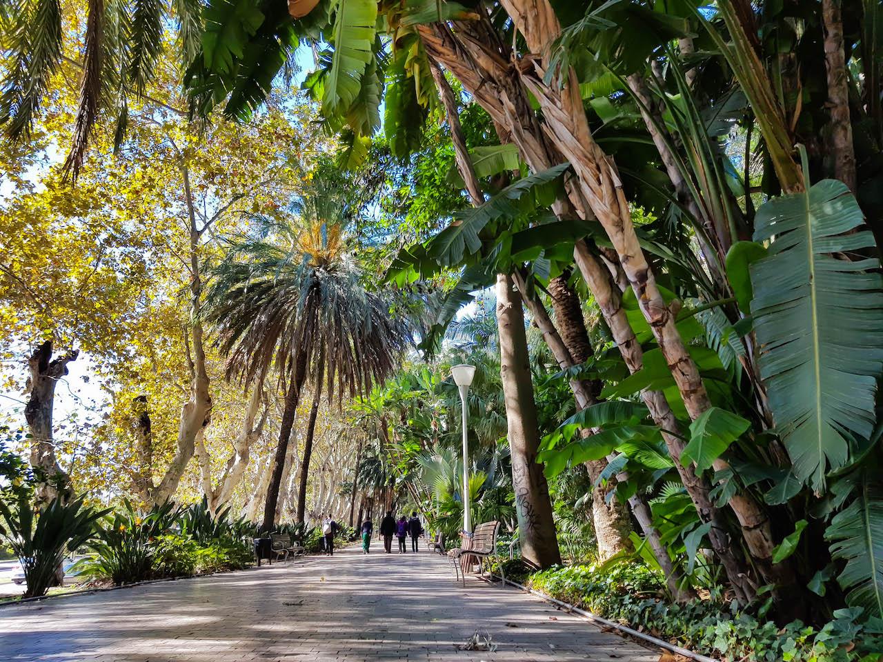 Parkanlage Paseo del Parque.