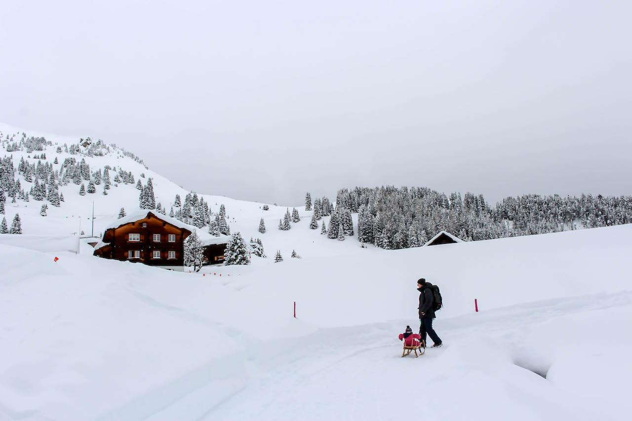 Mann zieht Schlitten mit Kind im Schnee.