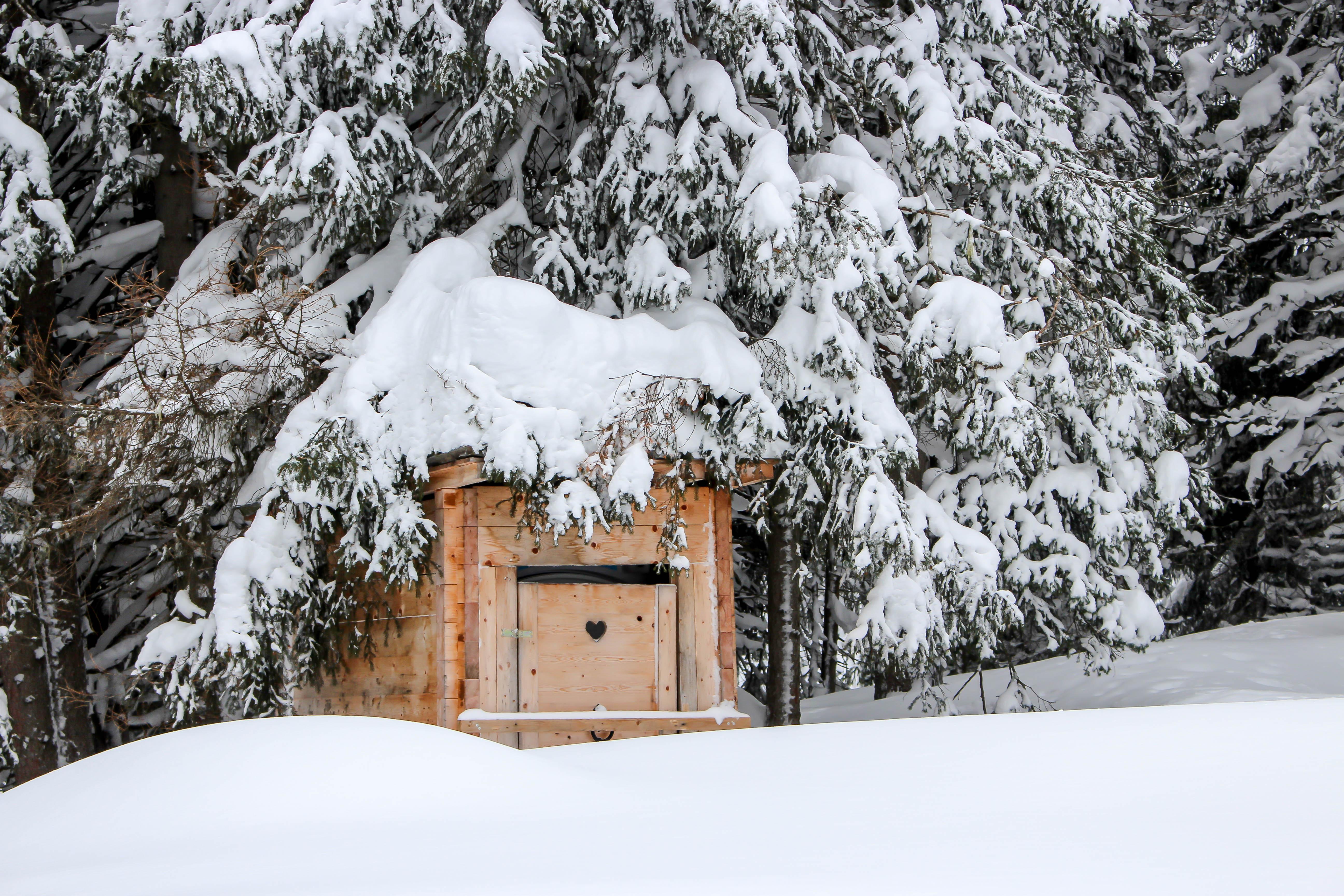 Schnee, Schnee und noch viel mehr Schnee!