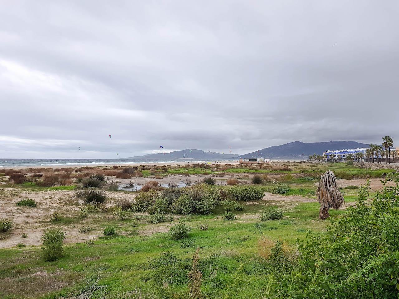 Strand in Tarifa mit Grün.