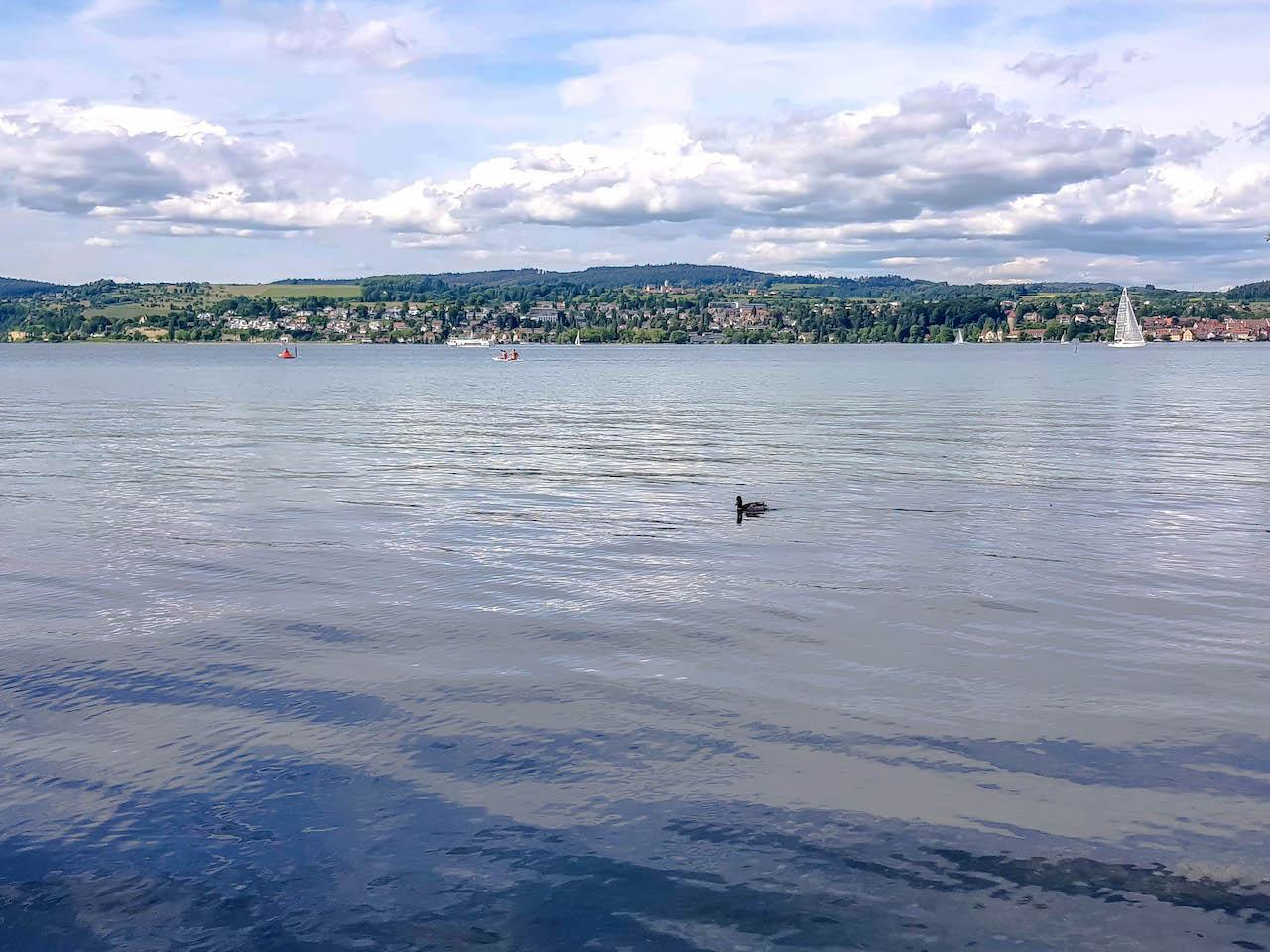 Der Bodensee - einfach schön!