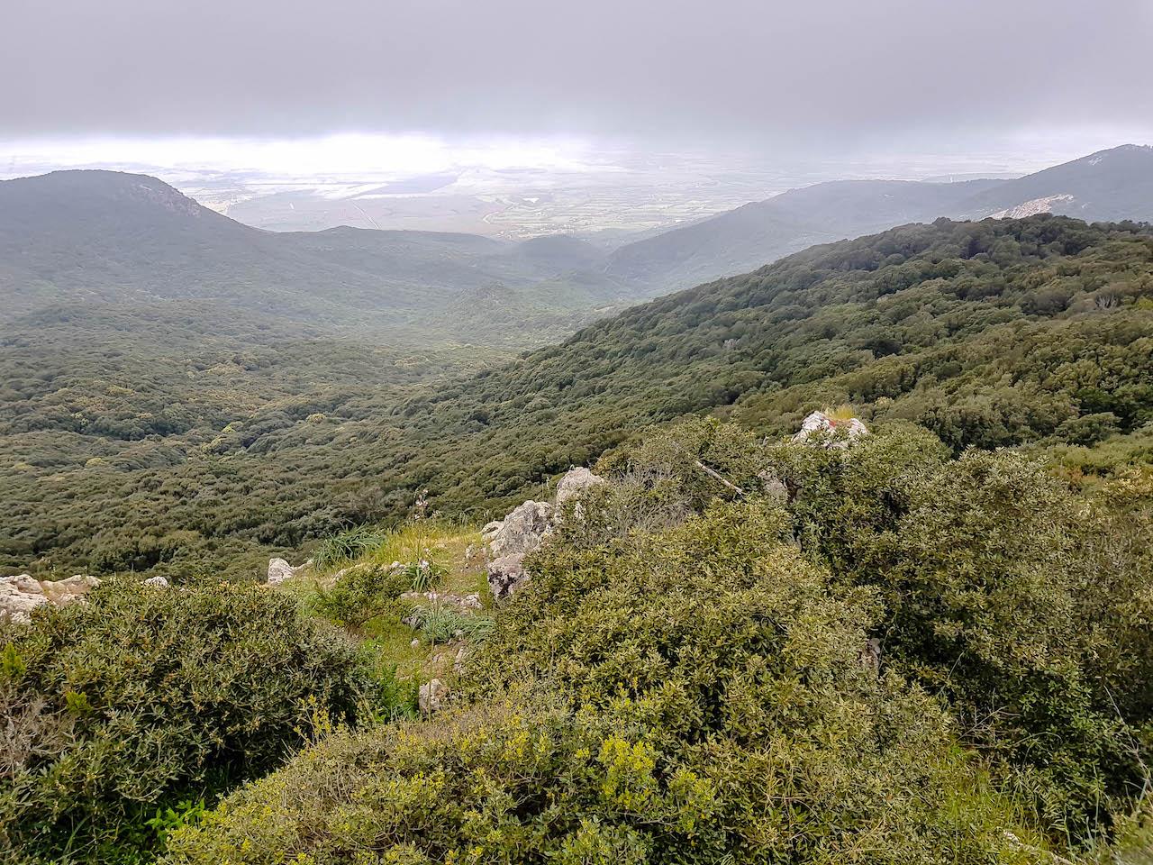 Der Naturpark Monte Arci.
