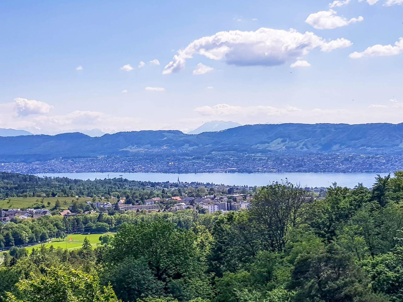 Aussicht vom Loorenkopf auf den Zürichsee.