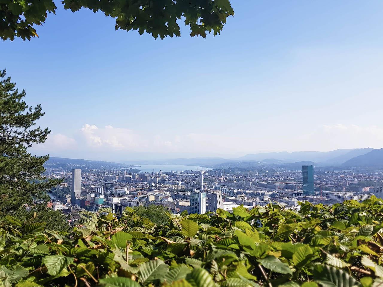 Meiner Meinung nach der schönste Blick über Zürich: Vom Käferberg aus.