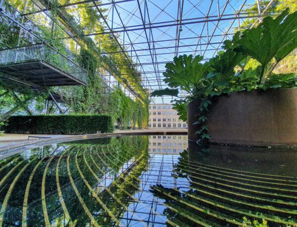 Wo Zürich am schönsten ist - Edition Stadtoasen
